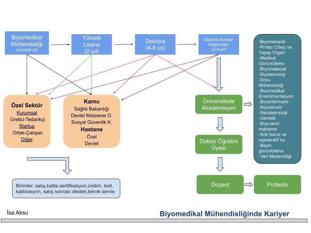 Biyomedikal Mühendisi Ne İş Yapar?