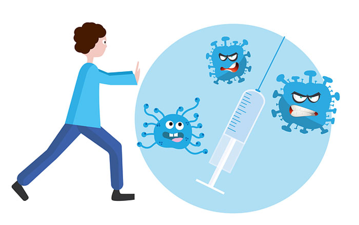 aşı ve ilaç yapımında aşamalar nelerdir?