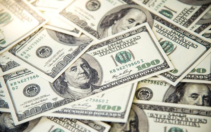 Dolar ne anlama gelir?