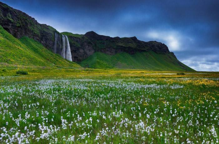 İzlanda doğası