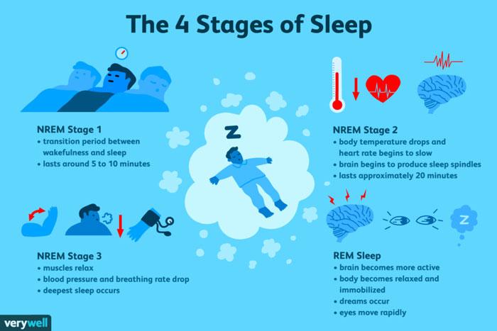 uykunun 4 evresi