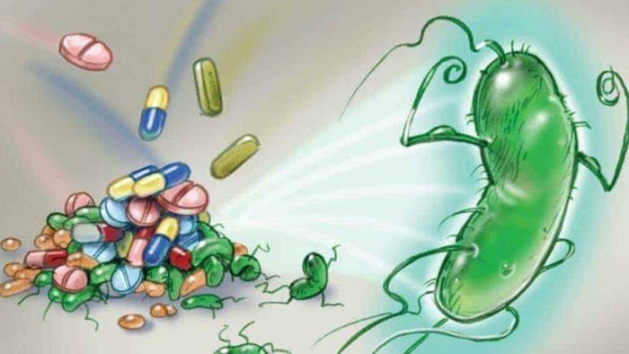 Bakteri hastalıkları