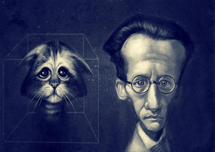 Erwin Schrödinger ve kedisi dalga mekaniği