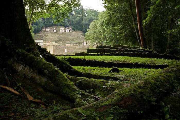 Maya uygarlığı hakkında bilgiler