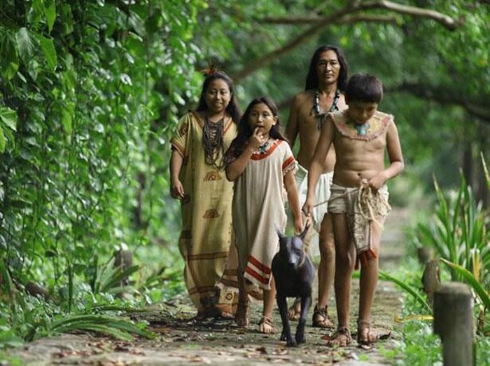 Mayaların  yaşadığı coğrafya